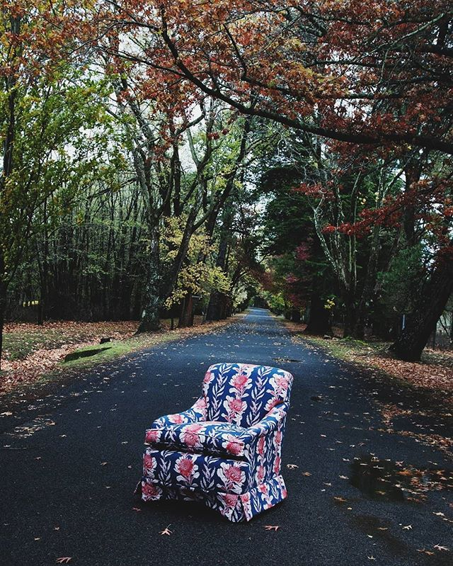 Shooting a Utopia Goods covered armchair in Hill End avenues...