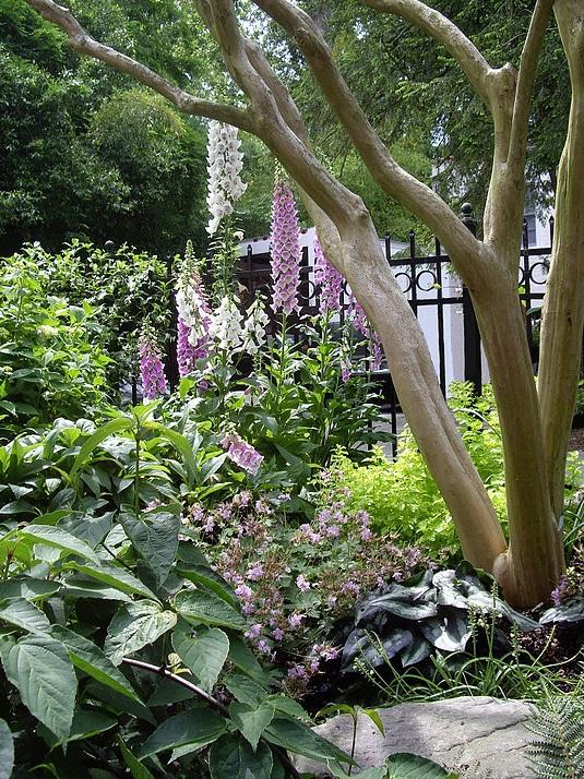 garden-design-atlanta-buckhead