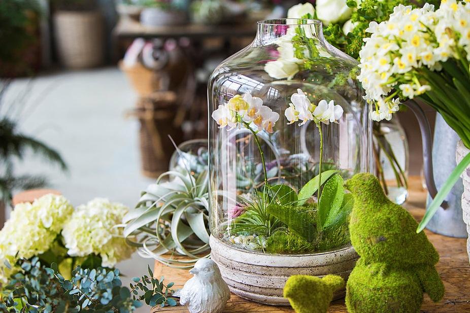 floral-delivery-atlanta-terrarium