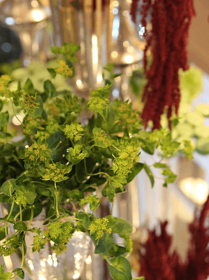 atlanta-florist-midtown-3.png