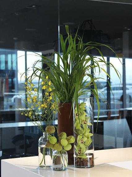 atlanta-florist-buckhead-4.png