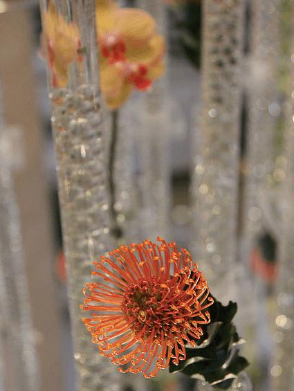 florist-westside-atlanta-19.png