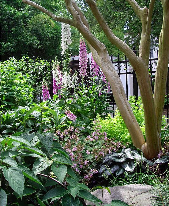 Garden Design — Le Jardin Français