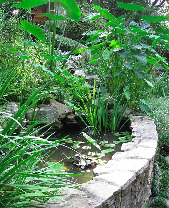 garden-design-atlanta-buckhead-15.png