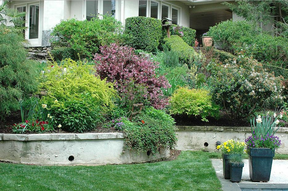 garden-design-atlanta-buckhead-14.png