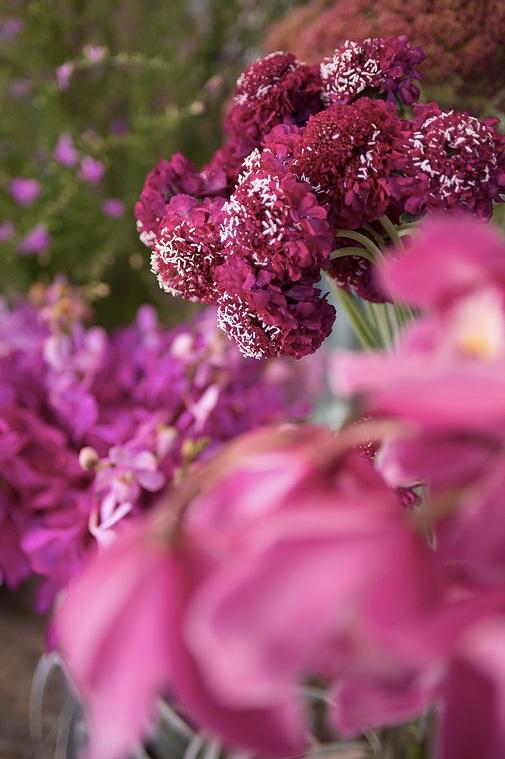 flower-shop-atlanta