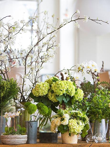 atlanta-florist-buckhead.jpg
