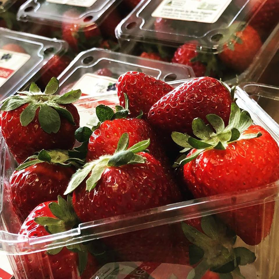 Certified Organic Strawberries from Suzanne at Berry Organic in Inverleigh, Vic (Local Region)