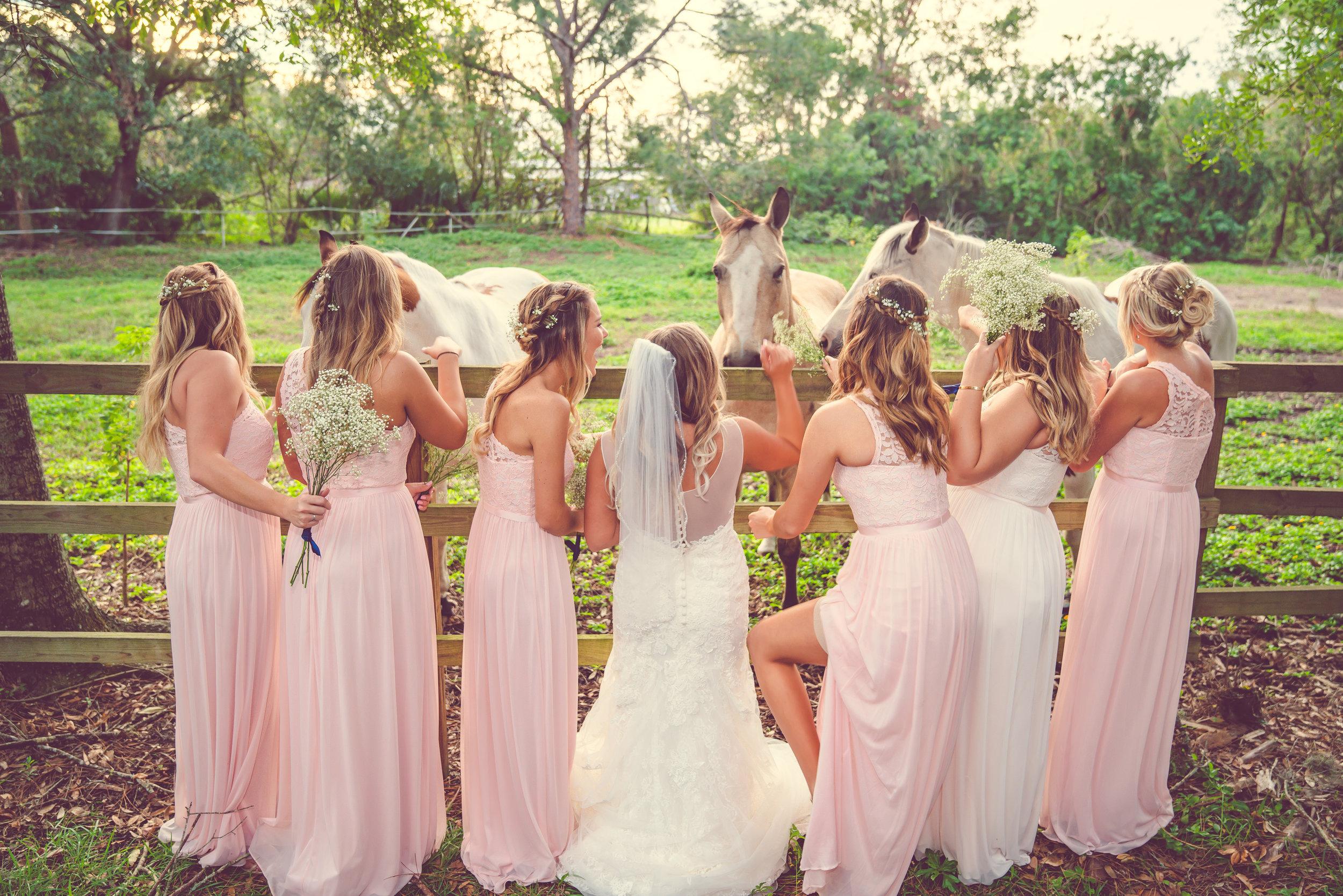 Birdsong wedding-4.jpg