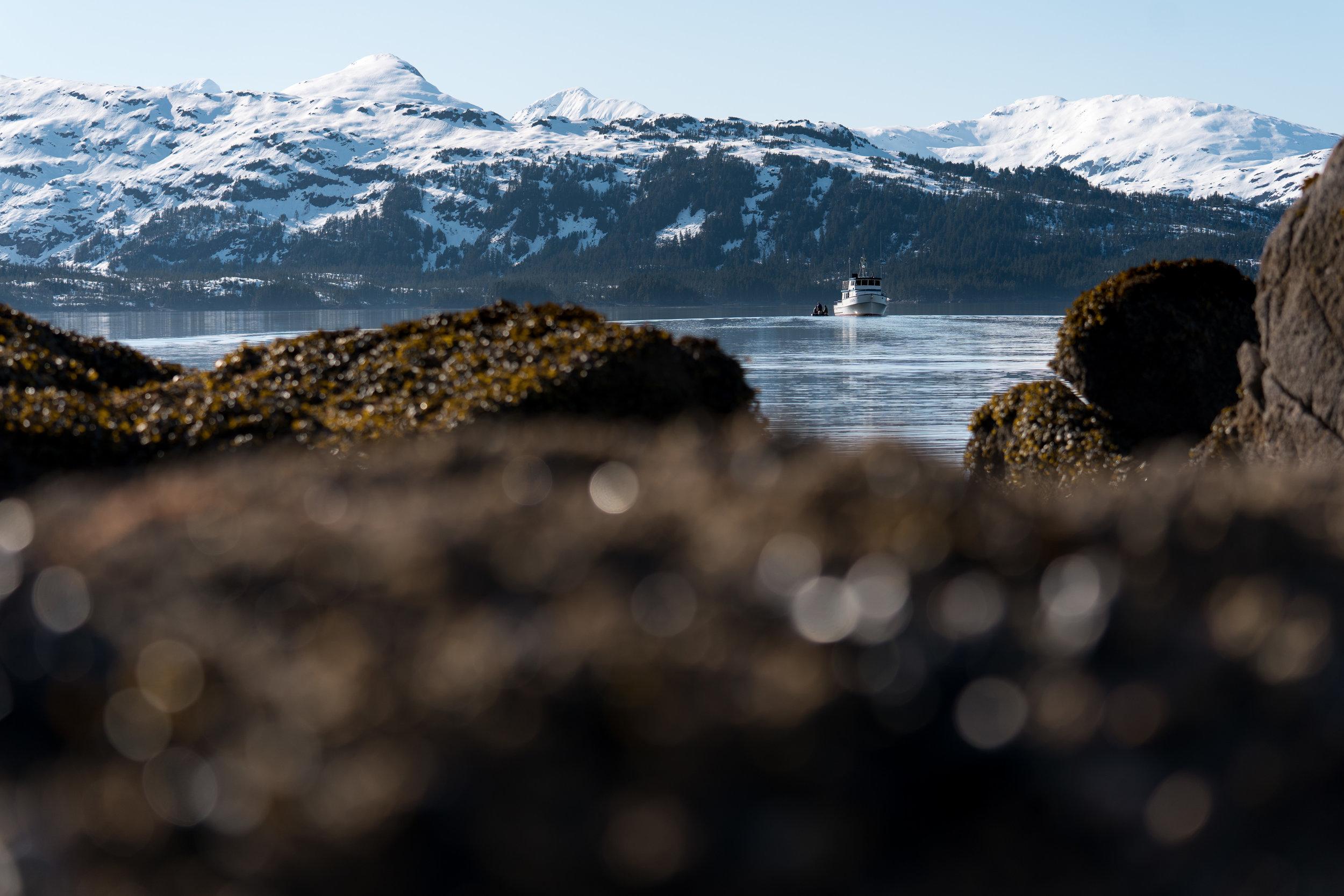 Alaska Trip Report (40 of 80).jpg