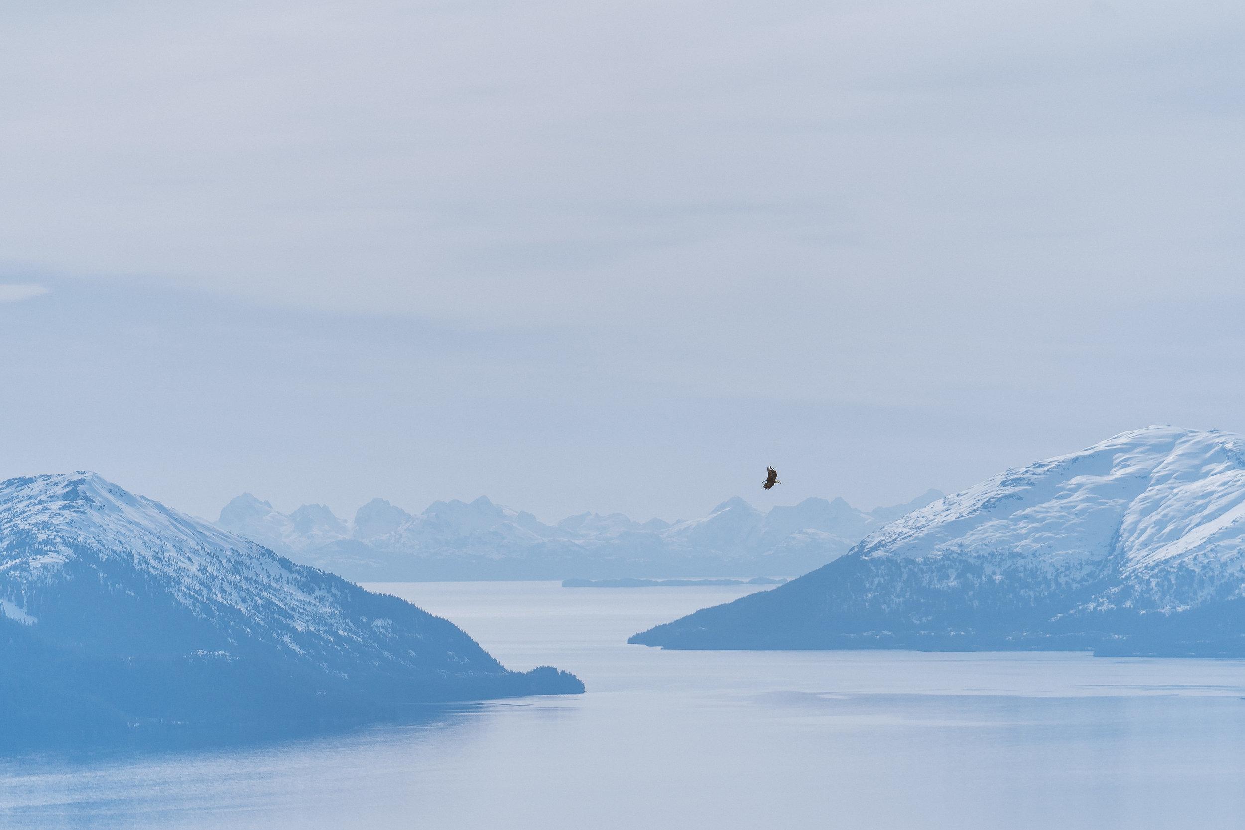 Alaska Trip Report (52 of 80).jpg