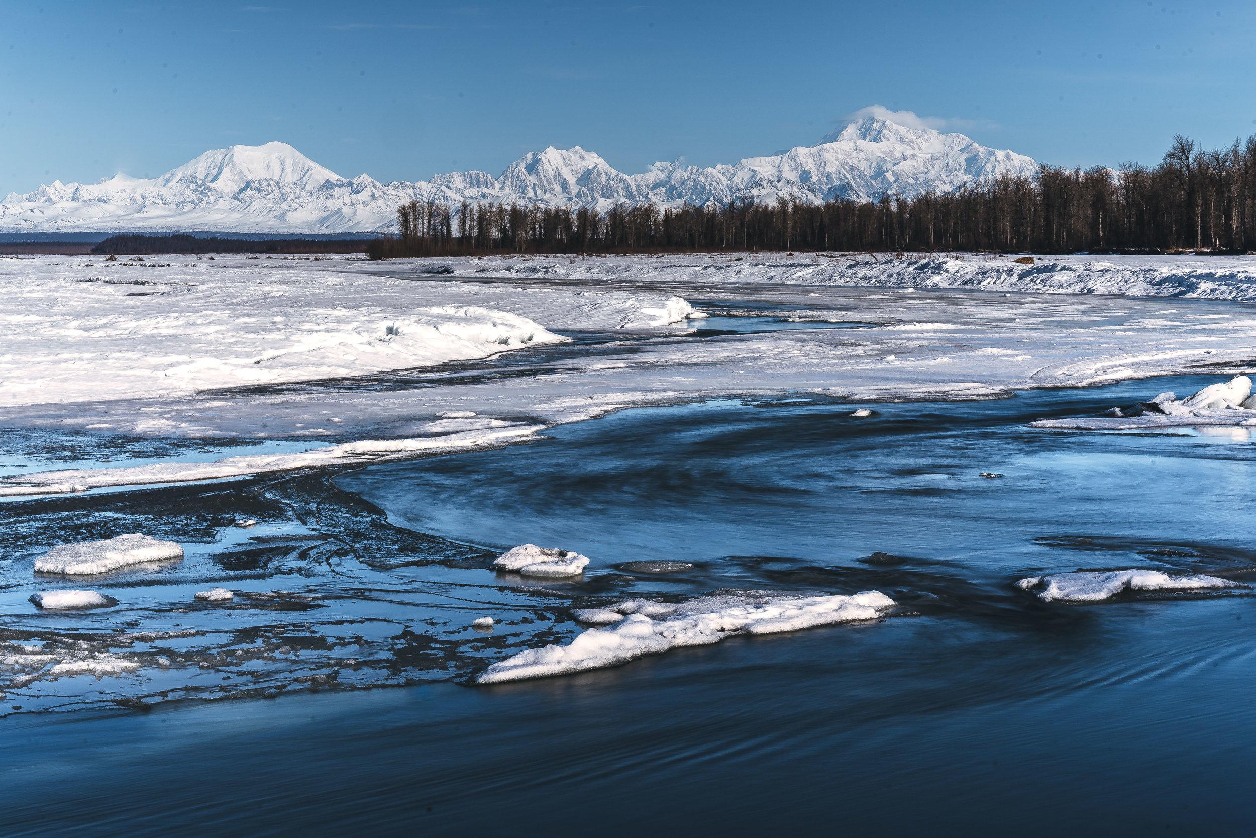 Alaska Trip Report (68 of 80).jpg