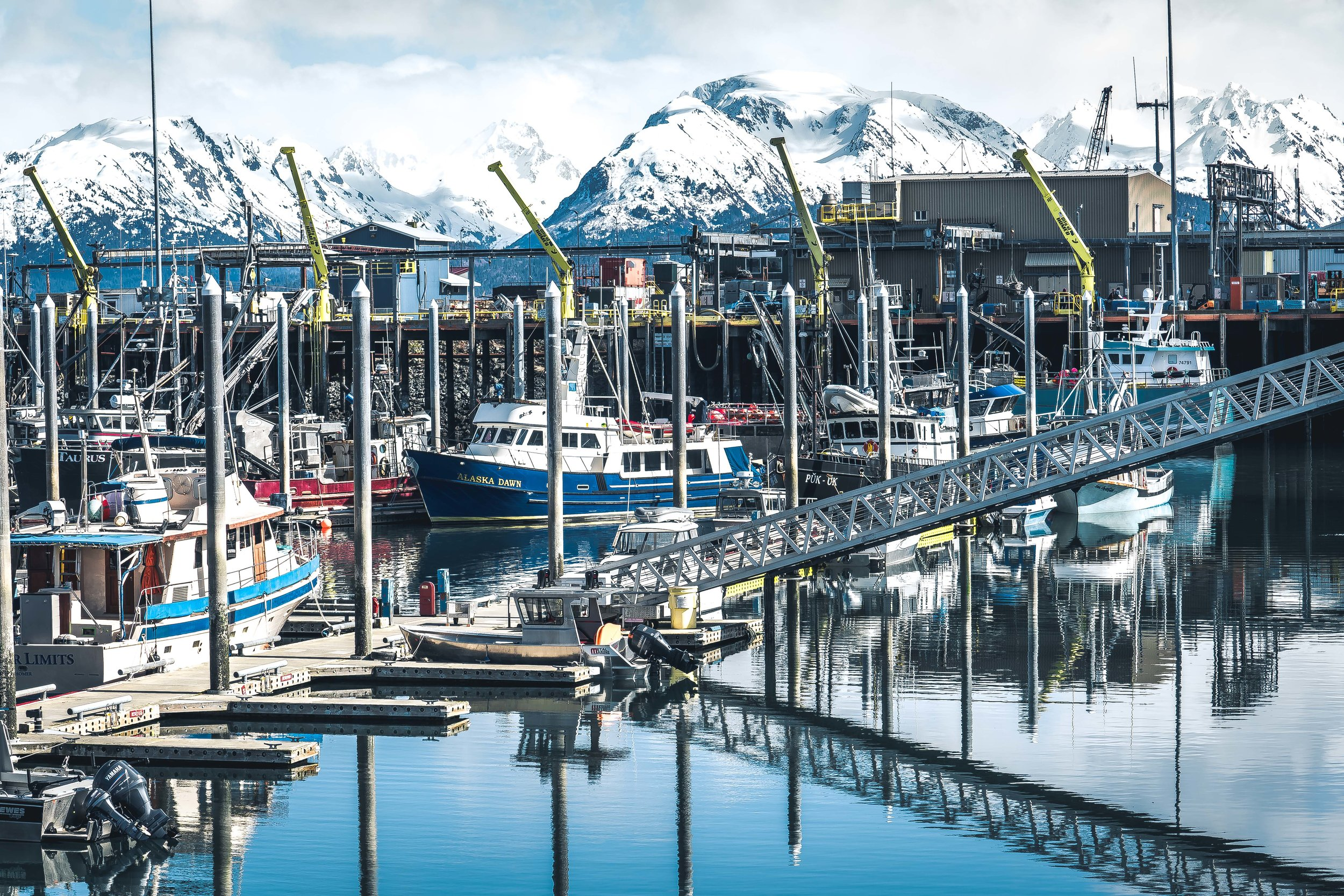 Alaska Trip Report.2 (3 of 3).jpg