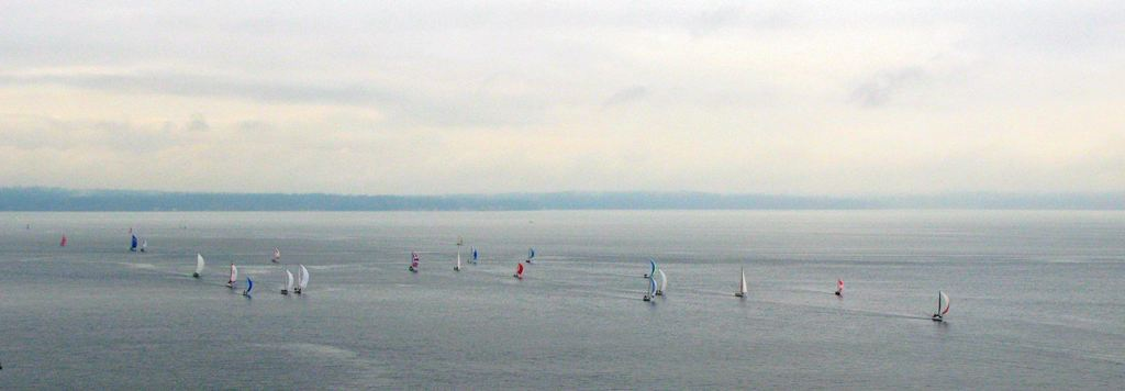 sailboat-races.jpg