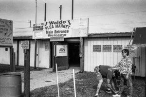waldo-lowres-4-300x200.jpg