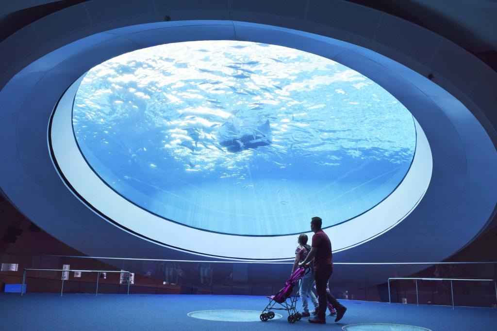 aquarium-oculus_1-1024x683.jpg