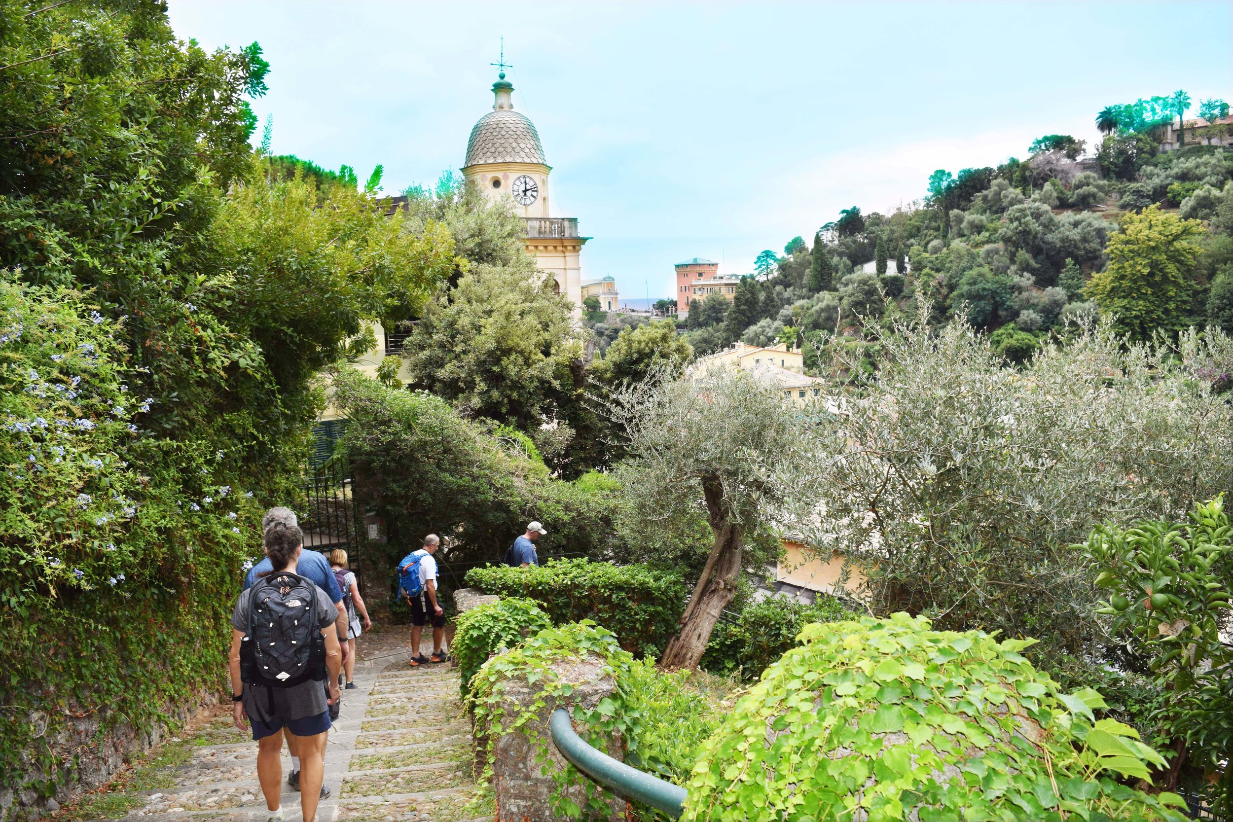 The final leg of the hike from Santa Margherita to Portofino is downhill into the picturesque Mediterranean village.