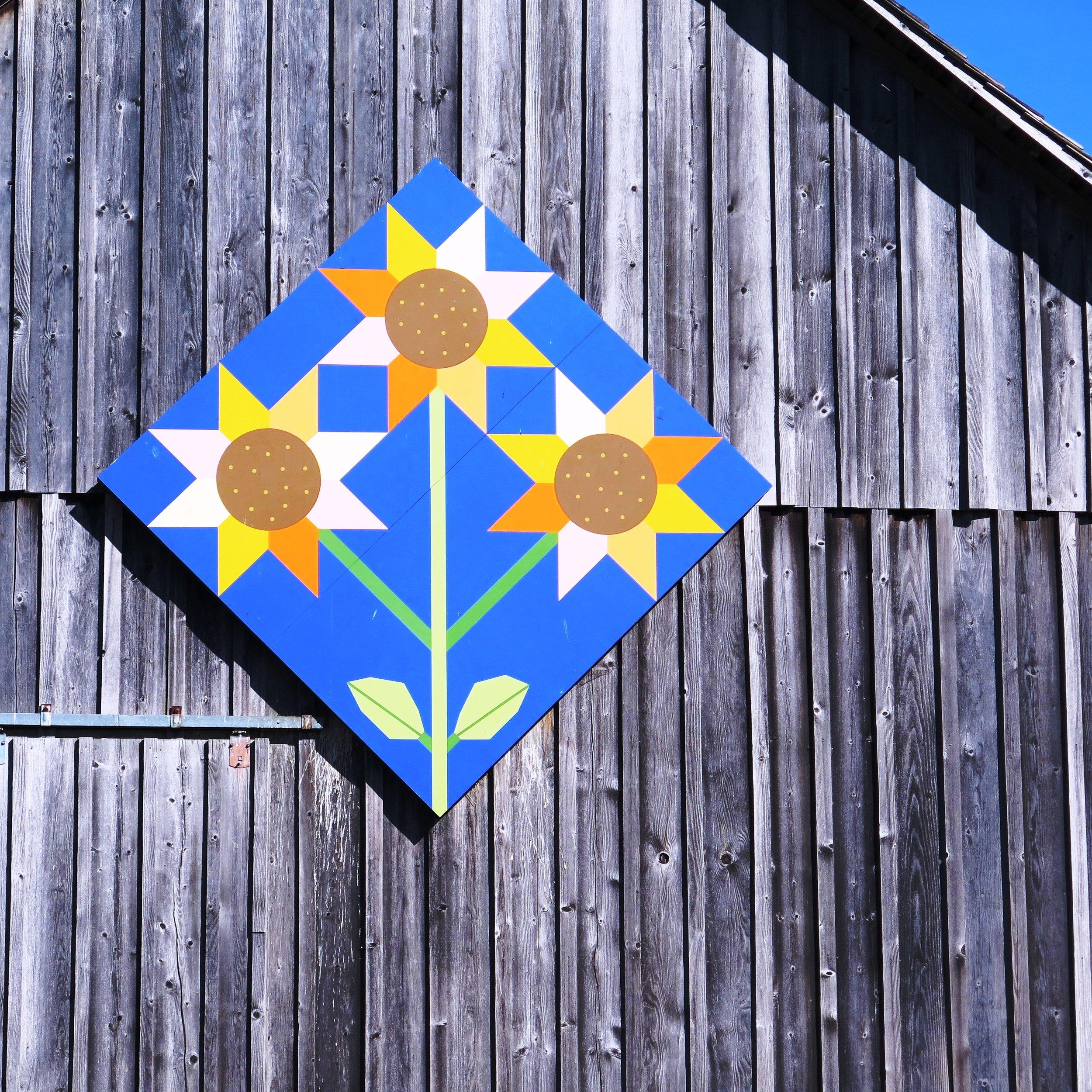 Sunflower Block 2.JPG