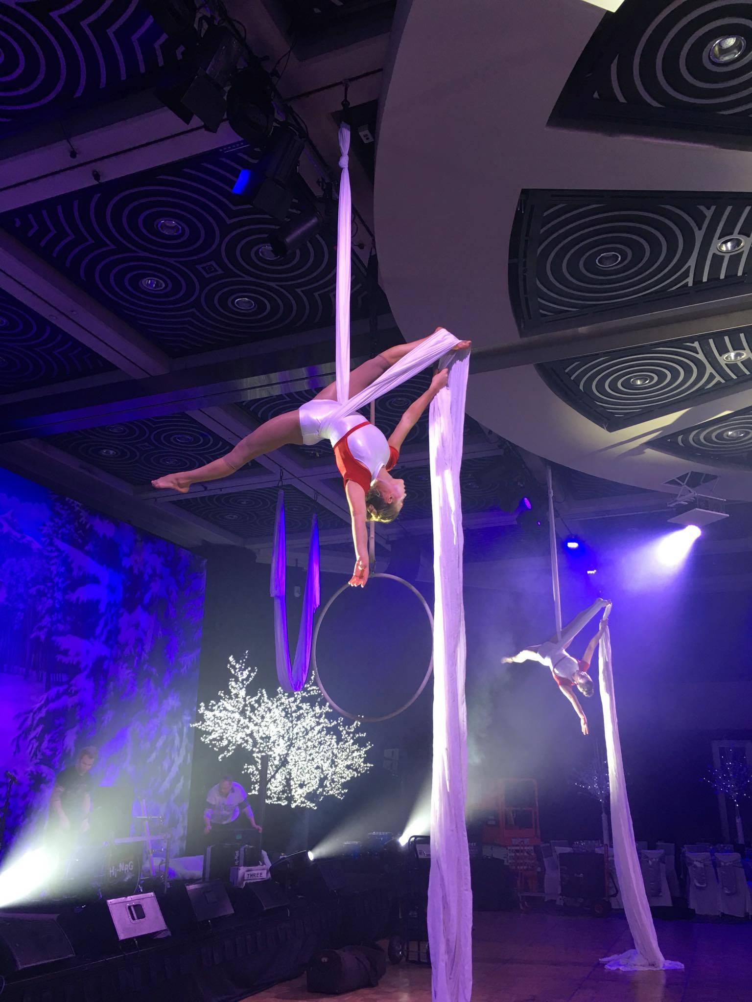 'Winter Wonderland' Aerial Silks
