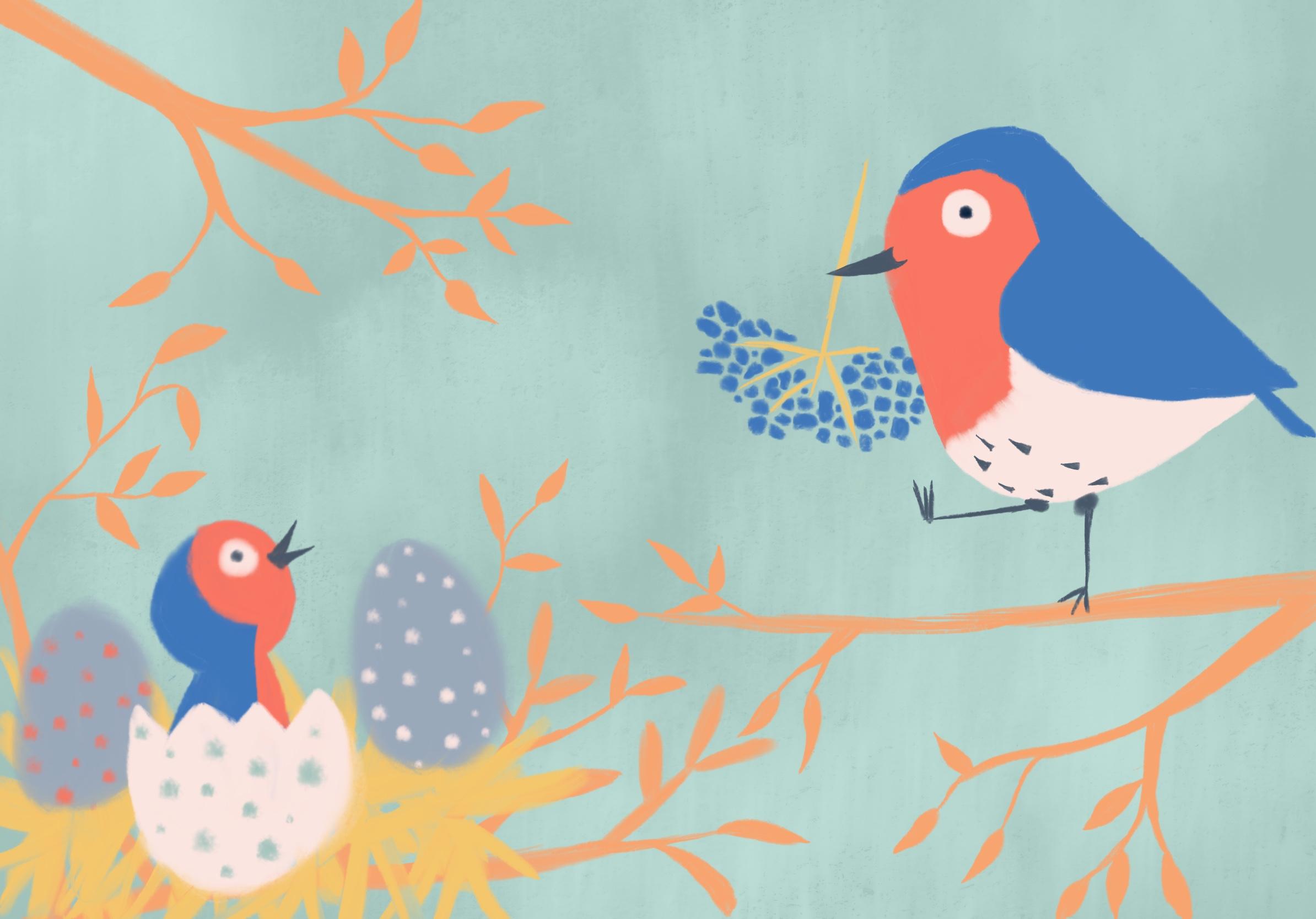 Birdies - Ages 6 weeks - 8 months