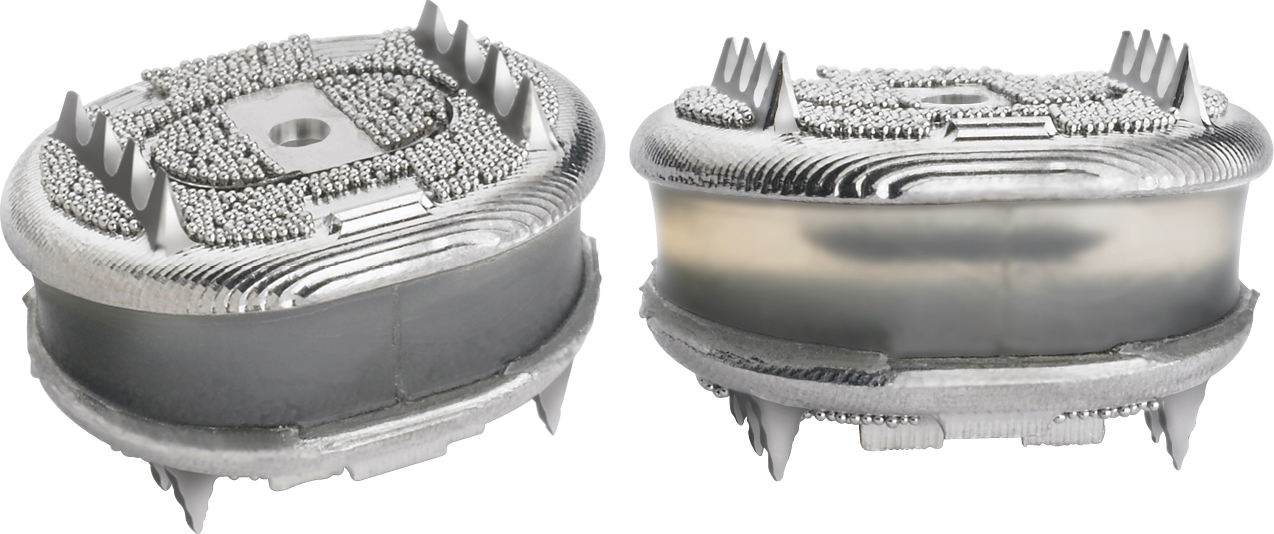 The AxioMed Freedom Cervical Disc