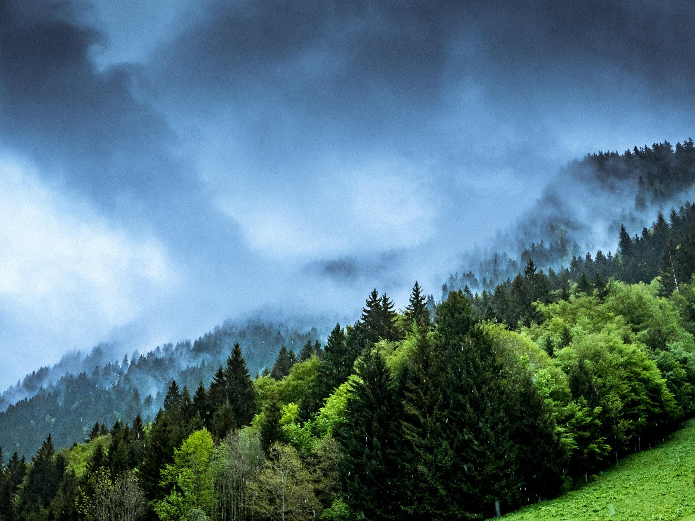 Bæredygtig ledelse - – indre og ydre ressourcer og deres indbyrdes afhængighed