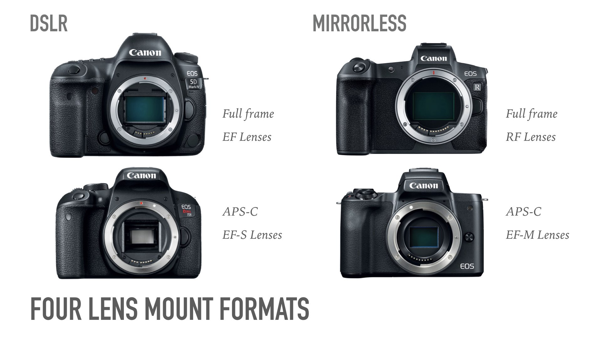 Guide to Canon Lenses.036.jpeg
