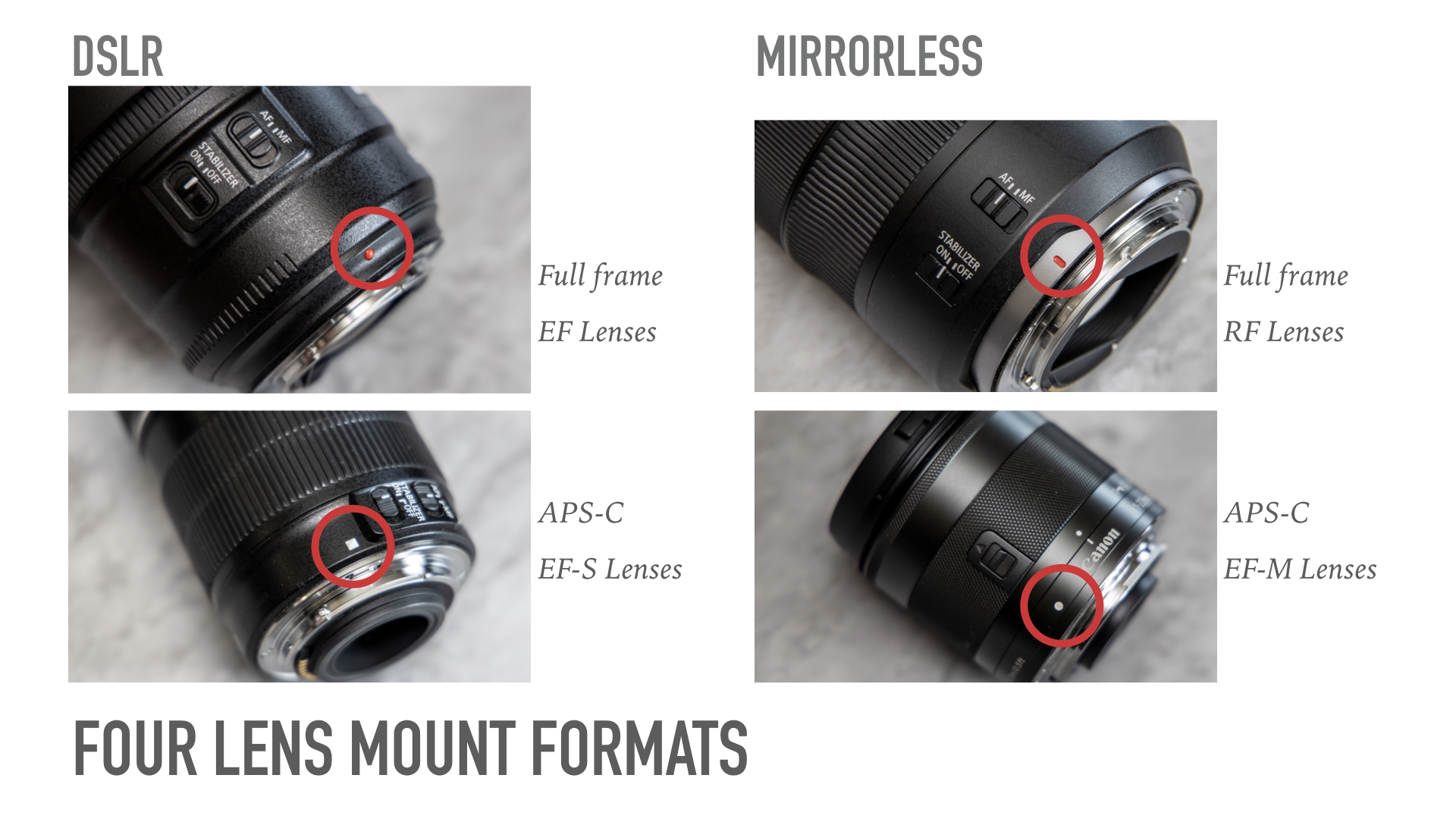 Guide to Canon Lenses - Lens Dots.jpeg