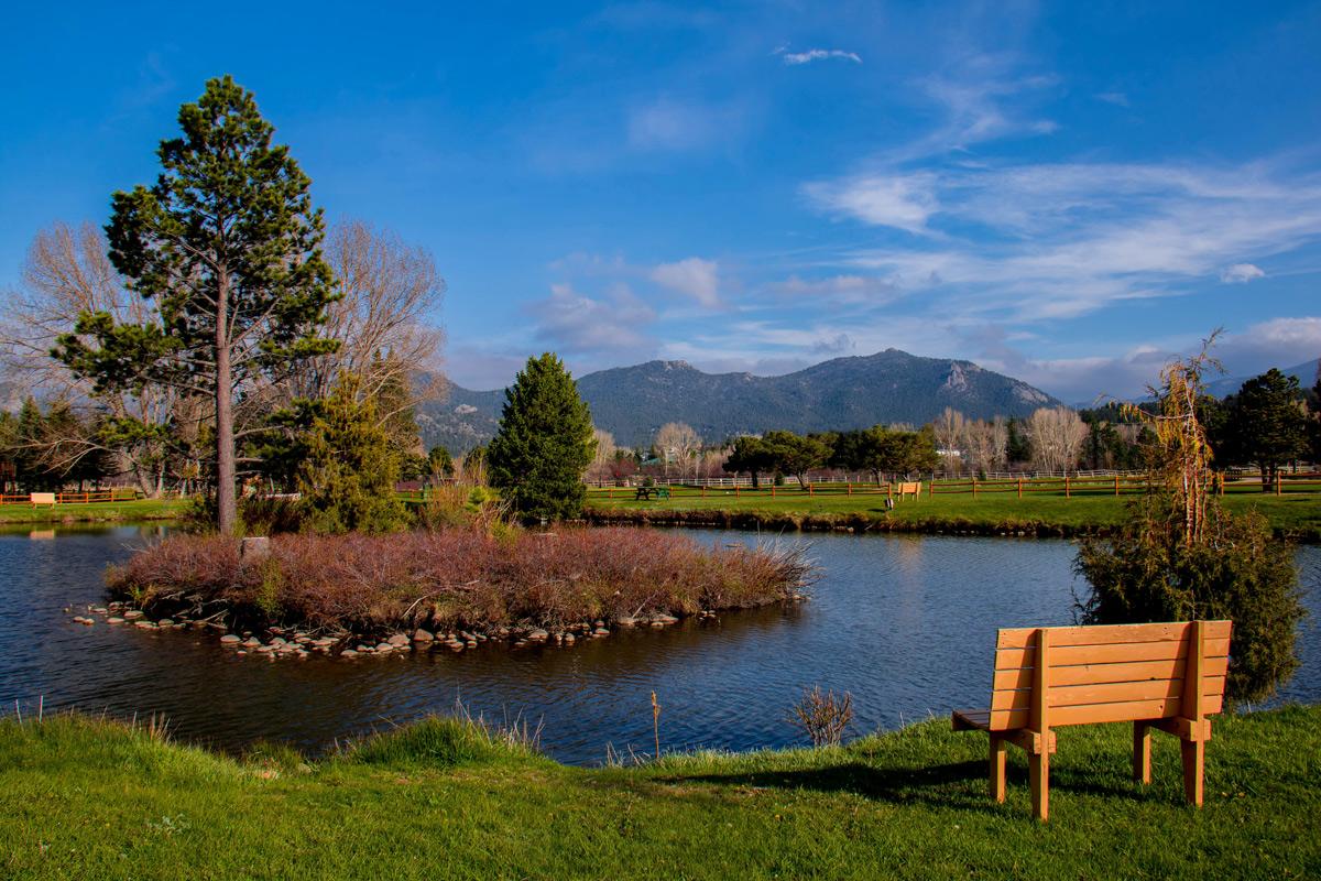 bench-pond-2.jpg