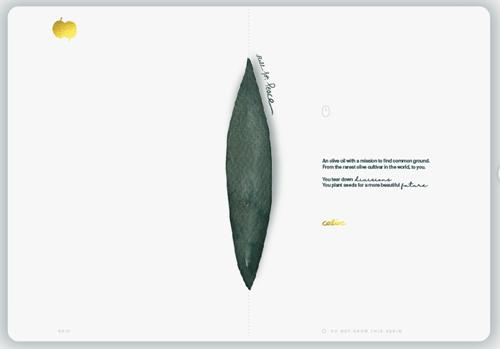 Our 1st website design