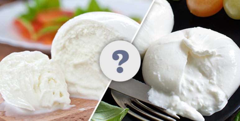 Difference-Between-Burrata-and-Mozzarella-Cheese