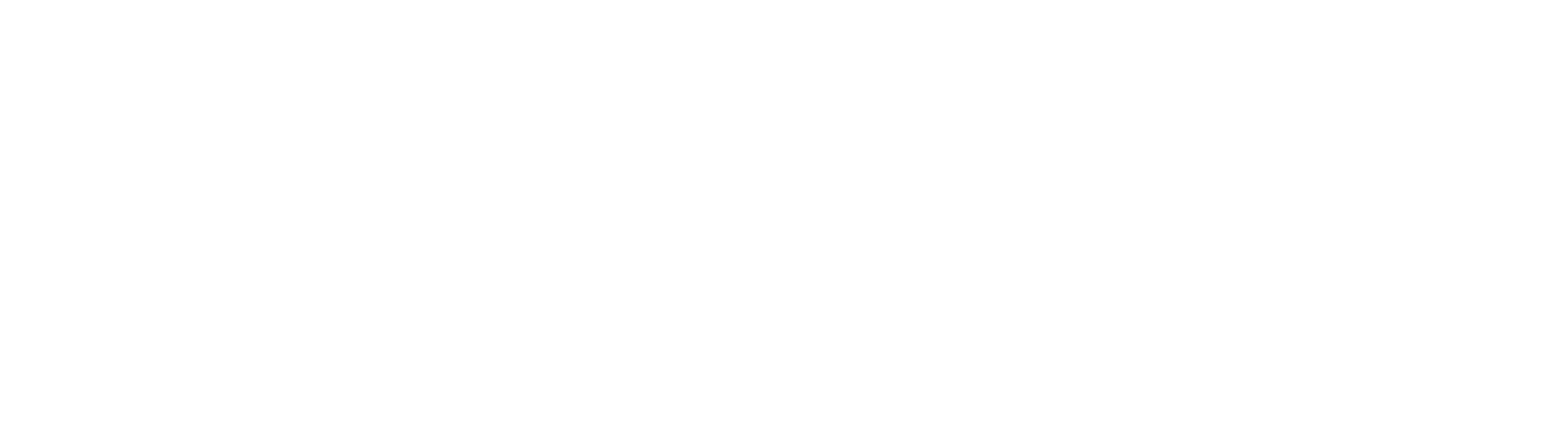 18_FFG_Logo_SubLogo_Accounting Solutions_White.png
