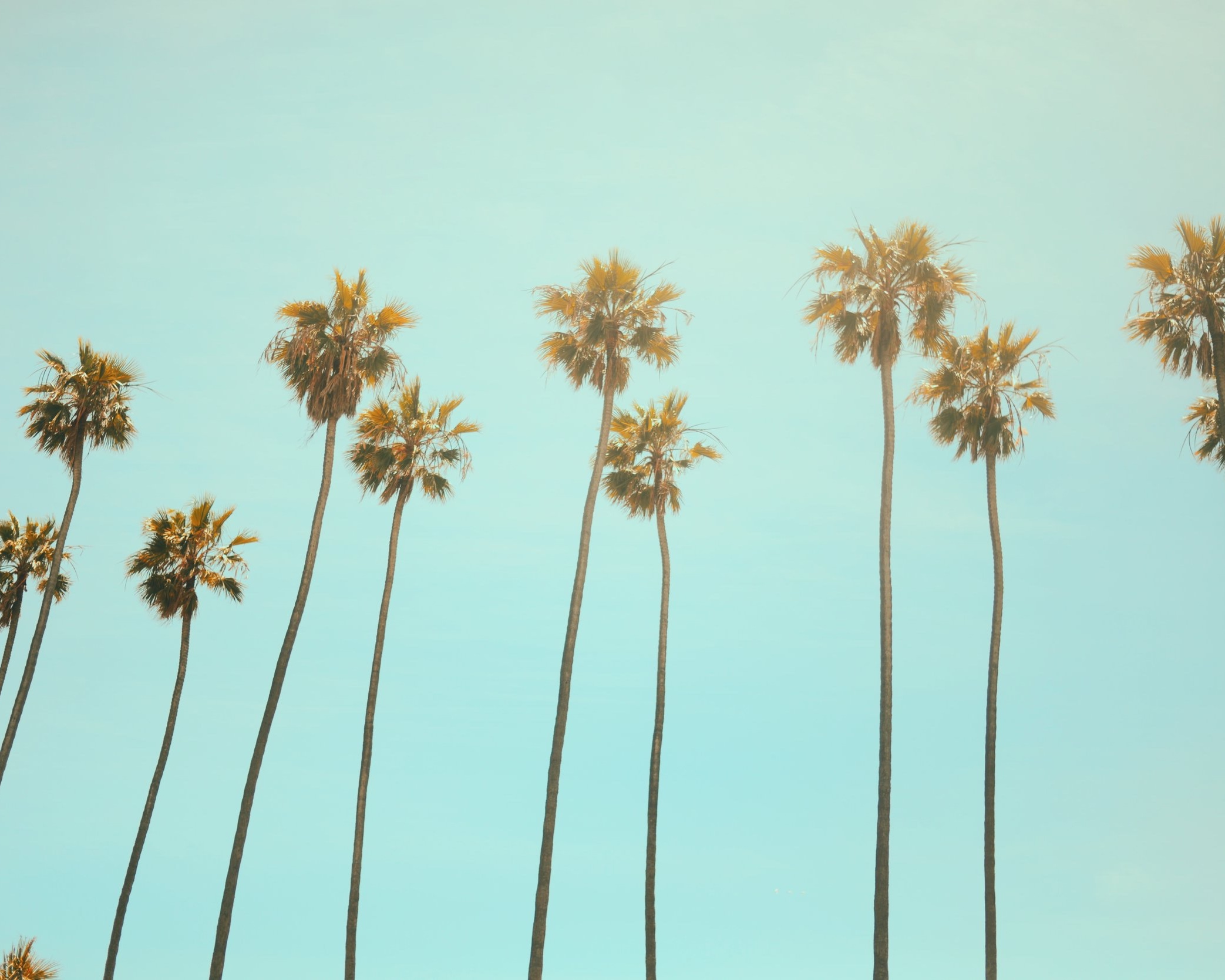 Los Angeles, CA, USA -