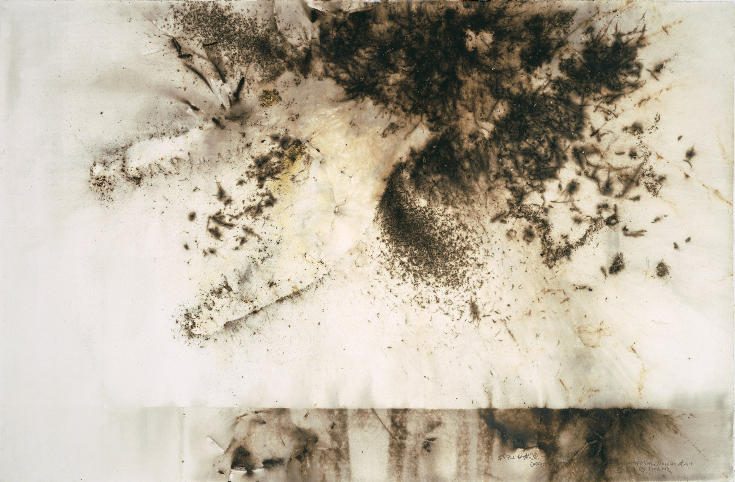 Crocodile from the Sky: Project for the Metropolitan Museum of Art  2006 Gunpowder on paper 200 x 300 cm
