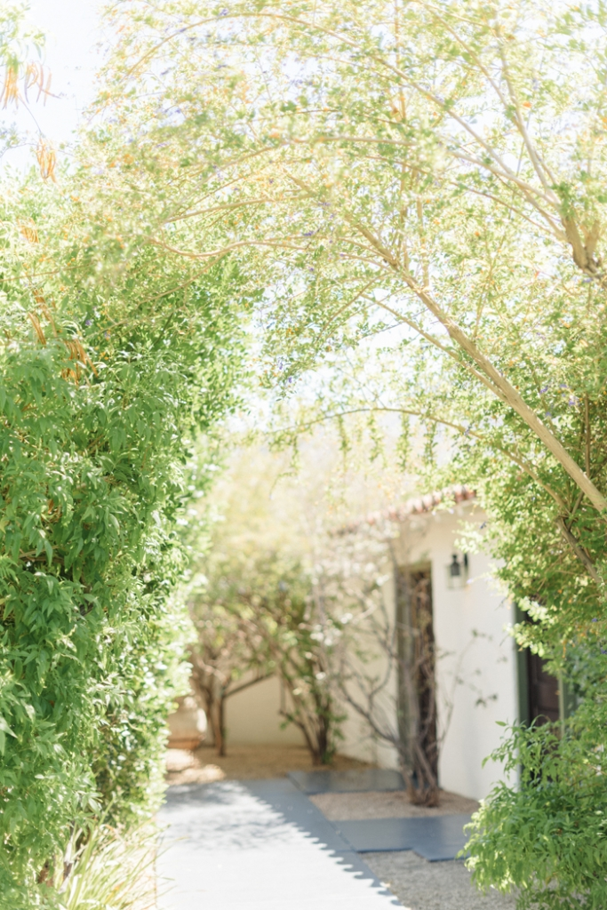 palm-spring-engagement-session-Colony-Palm-Palm-Springs-Joshua-Tree-Engagment-session-Sanaz-Photography-Palm-Springs-wedding-photographer-50-683x1024.jpg