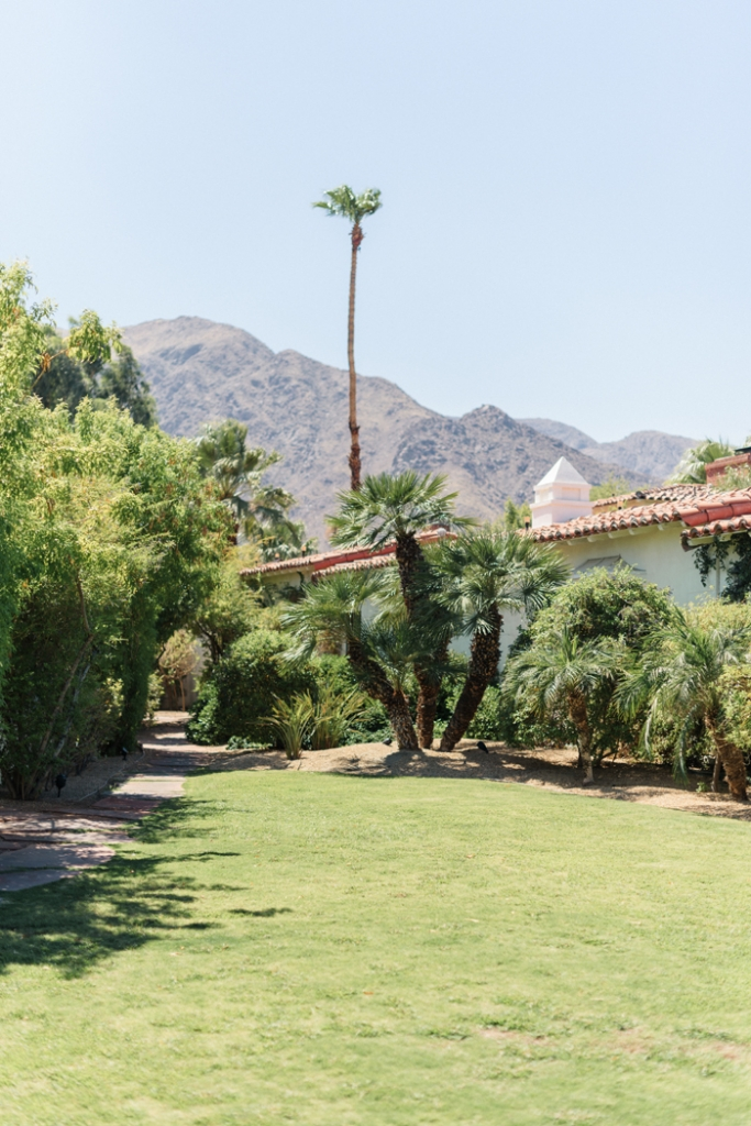 palm-spring-engagement-session-Colony-Palm-Palm-Springs-Joshua-Tree-Engagment-session-Sanaz-Photography-Palm-Springs-wedding-photographer-51-683x1024.jpg