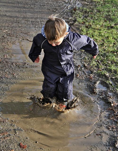 puddle-3112365_640 (1).jpg