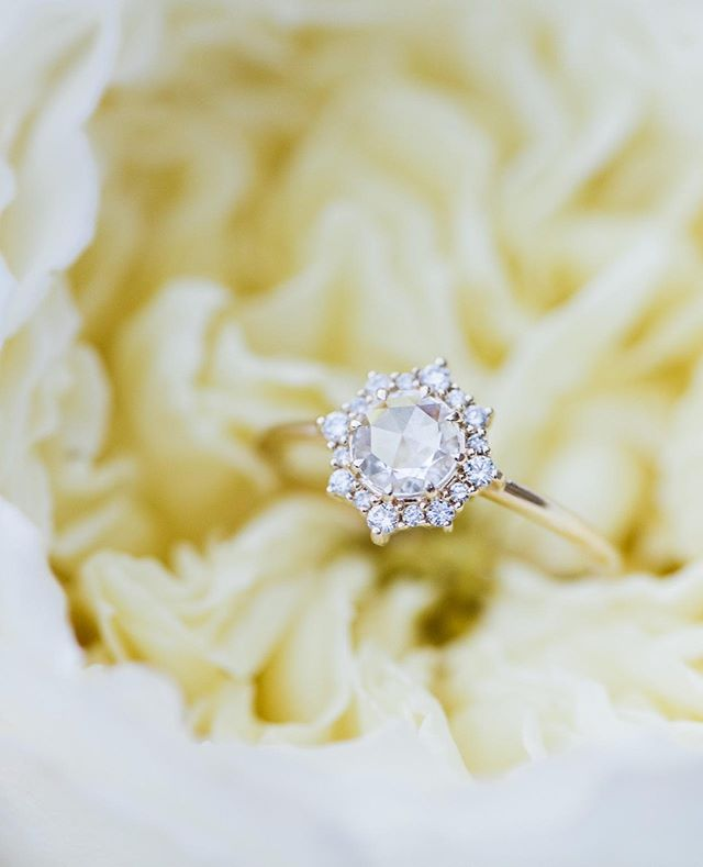 Obsessed with this shot of @everettfinejewelry's Sienna engagement ring by workshop attendee @nikkelsphotography. . . . . . .  #weddingstyling101 #weddingstylingworkshop #weddingstylingforphotographers #uniqueengagementrings #uniqueengagementring #classicbride #weddinginspo #smallweddingideas #weddinginspiration #weddingday #flatlaystyling #estatewedding #weddingdaydetails #engagementringshot #engagementringideas #photographyworkshop #weddingphotographyworkshop #weddingphotographyworkshop