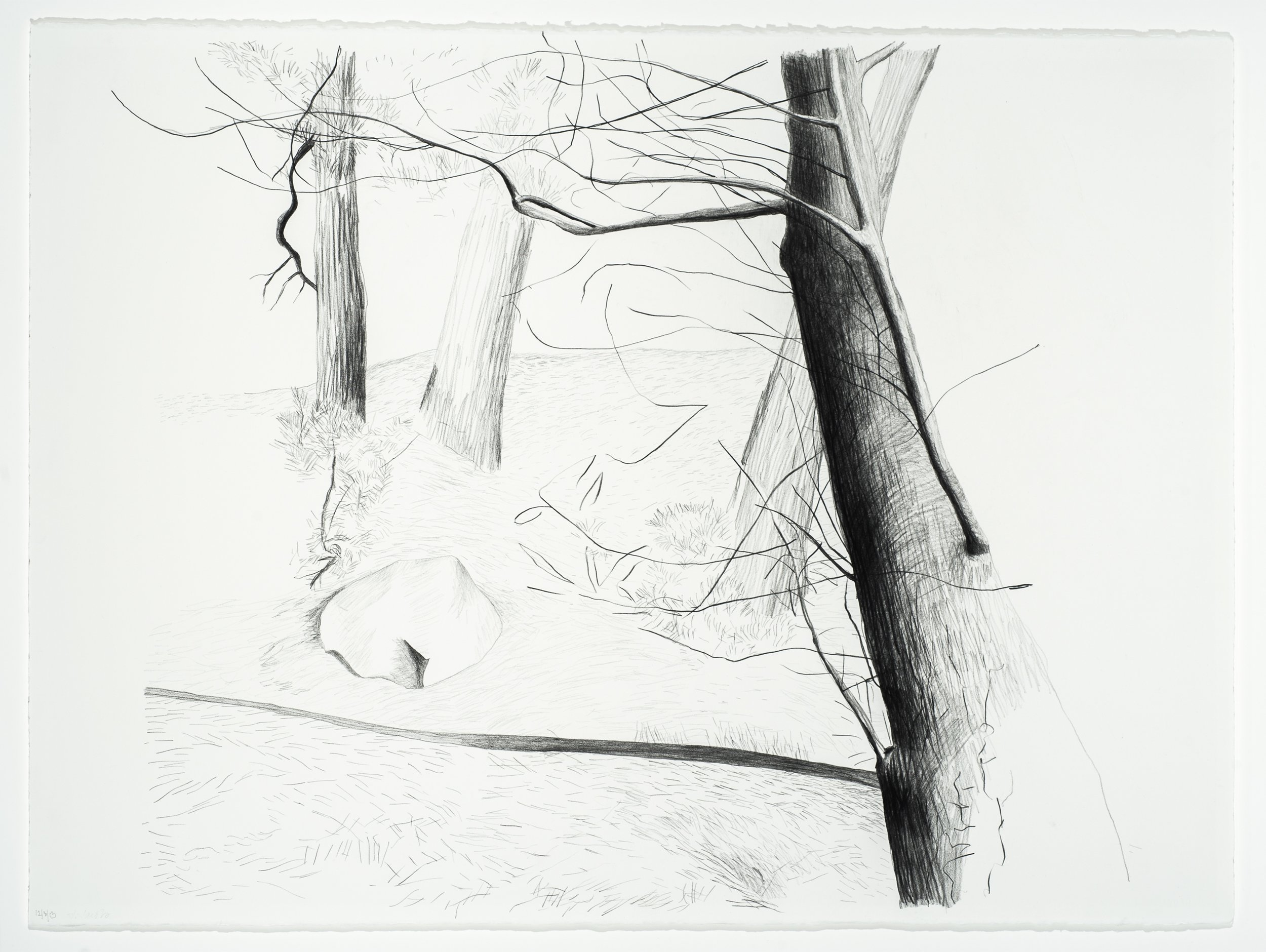 "Across the Street,  2013, Graphite/Paper, 22"" x 30"""