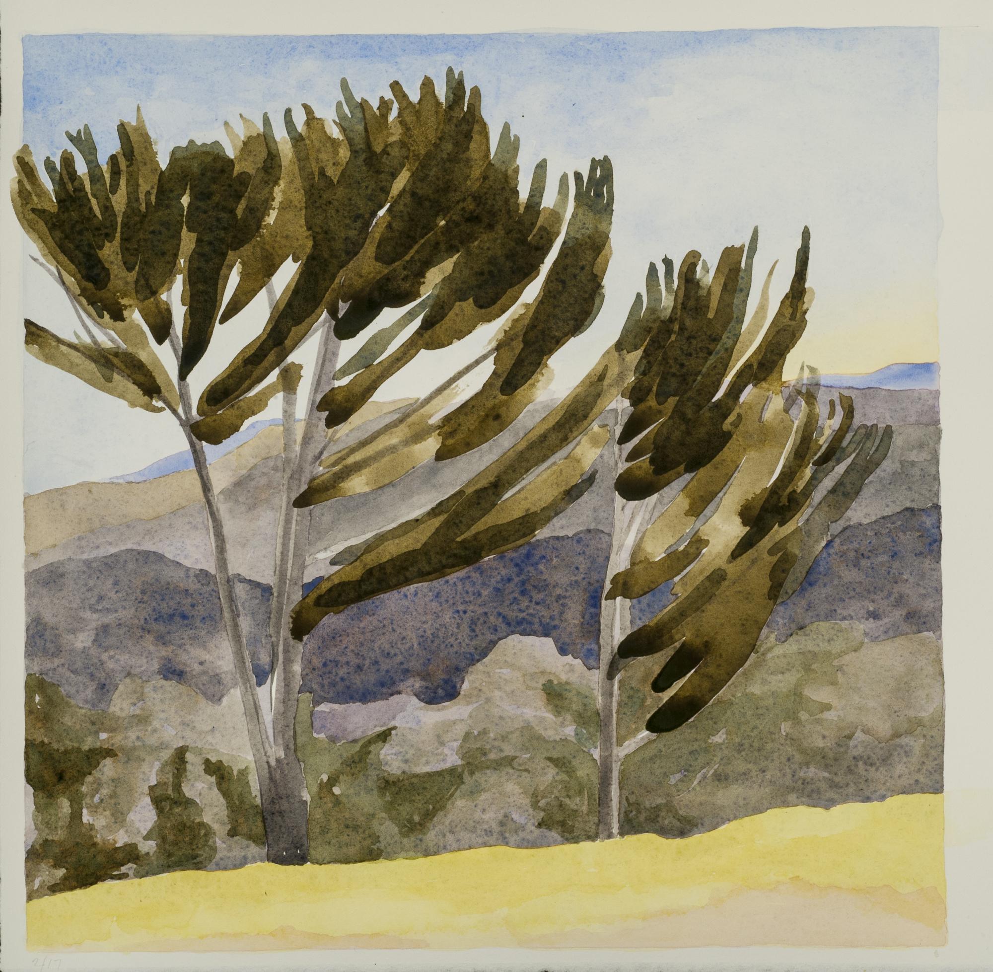 "Distance Through the Pines , 2017, W/C, 11"" x 11"""