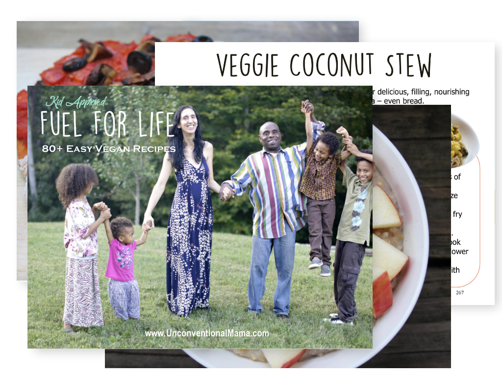 Fuel For Life $20 - 80+ Easy Vegan Recipes (Kid Approved)