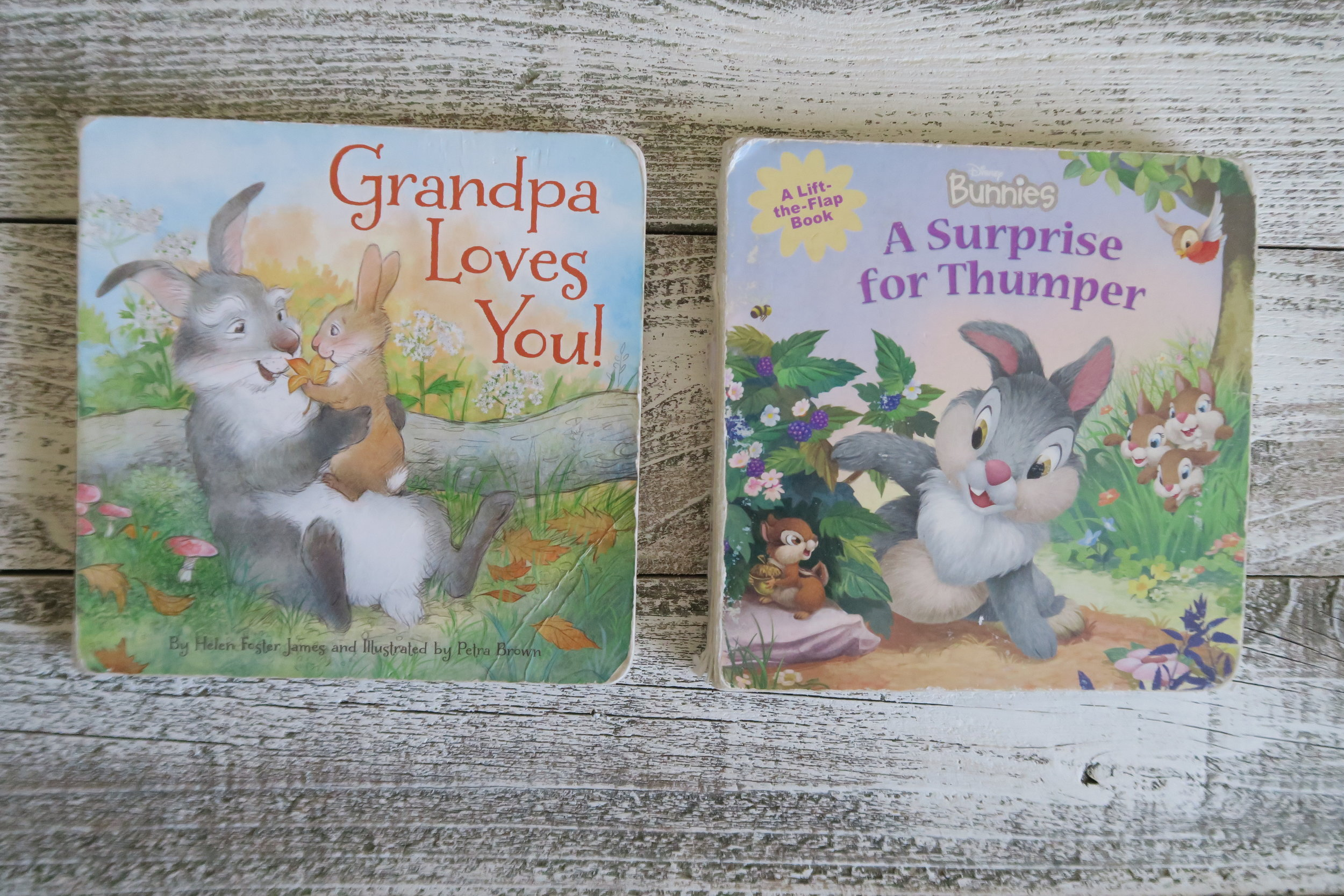 Two totally cute toddler books