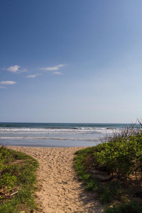 path-to-the-beach.jpg