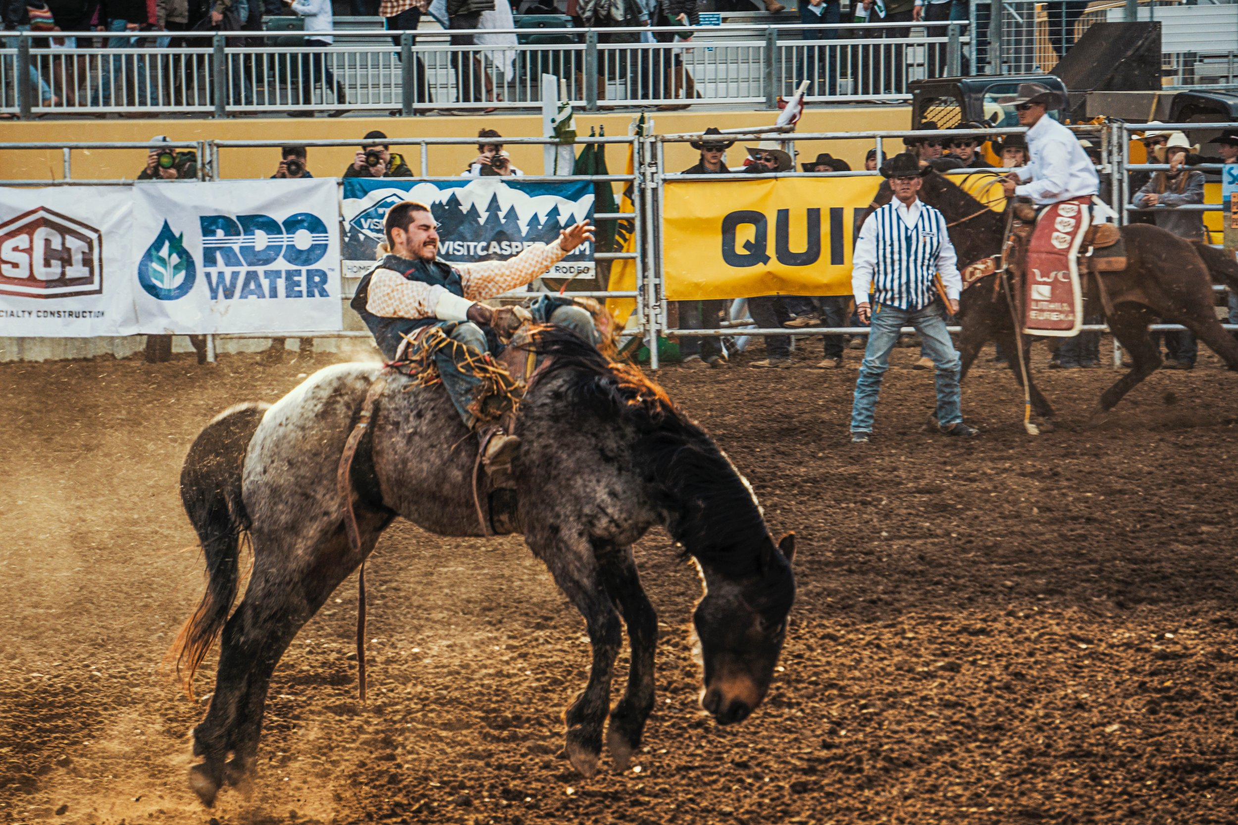 The American Rodeo -