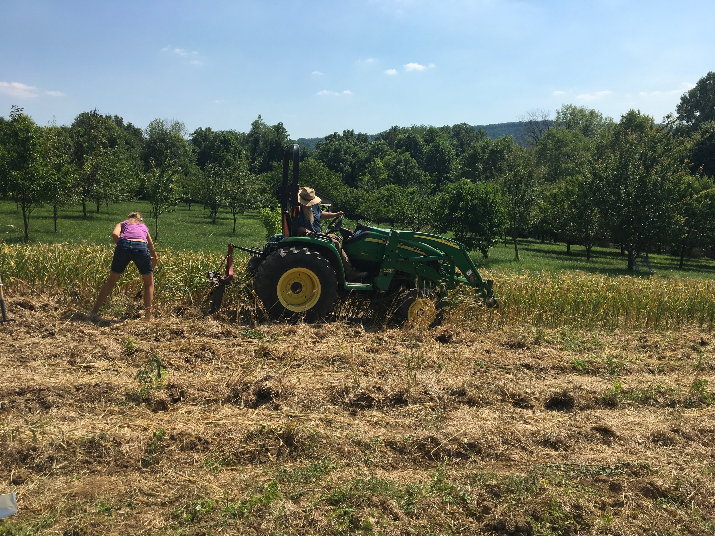 Dax Funderburk - Harvest Tractor .JPG