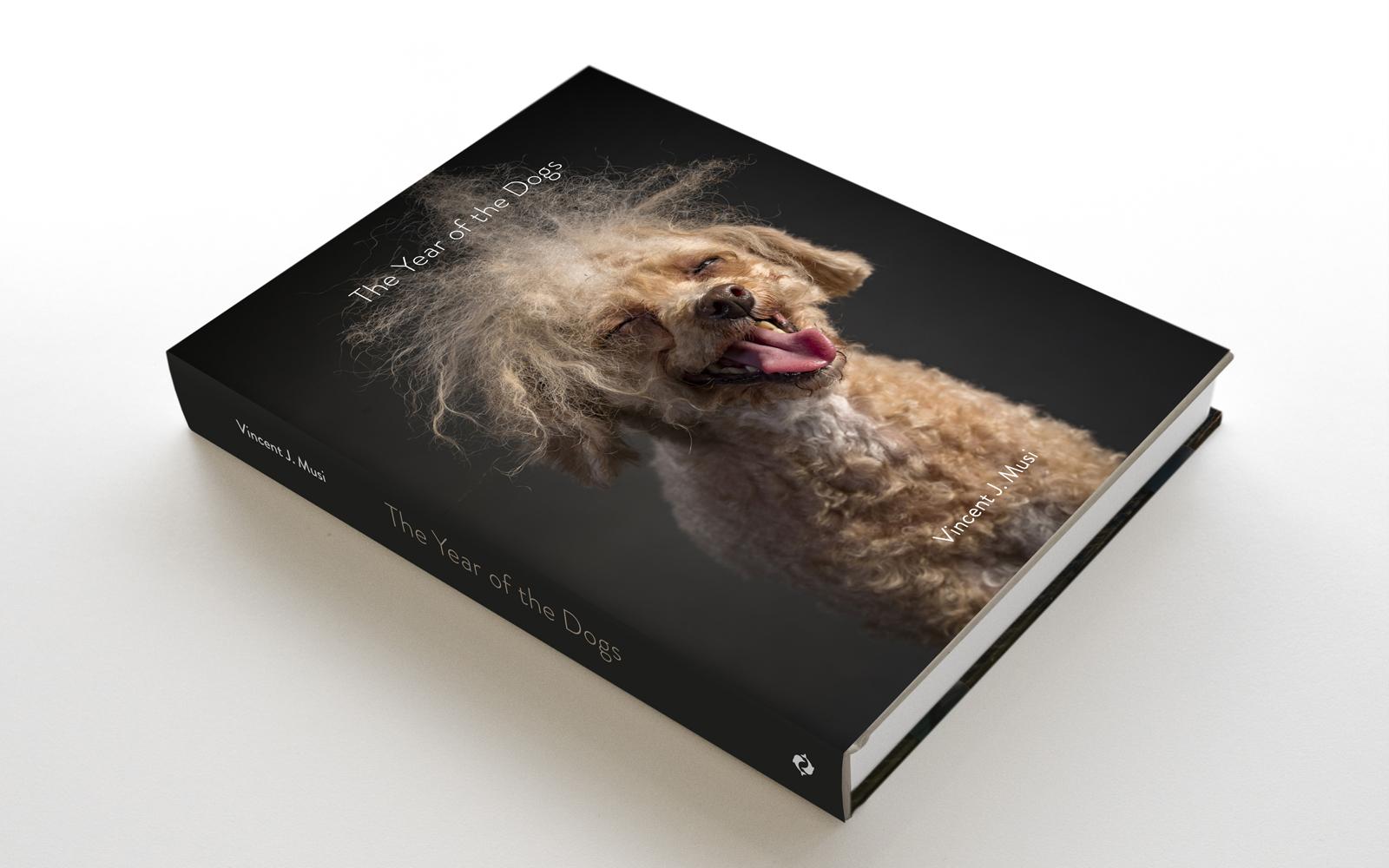 年的最犬的-book.jpg