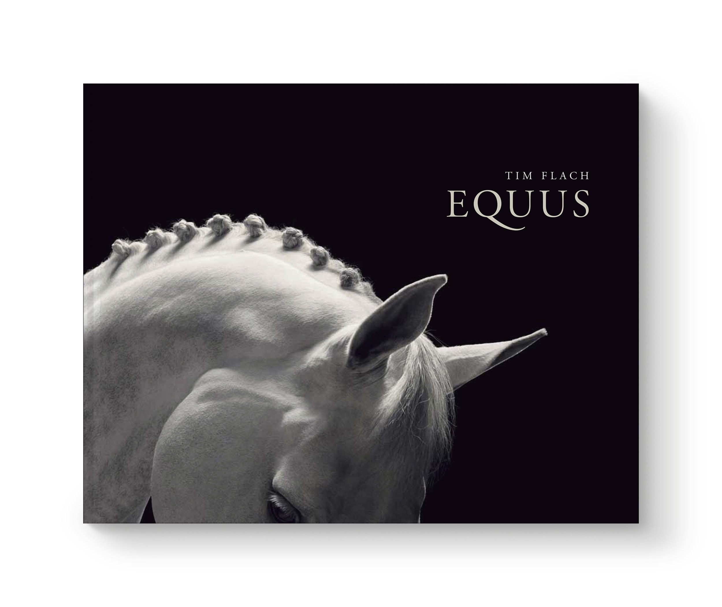 tf-equus-jkt.jpg