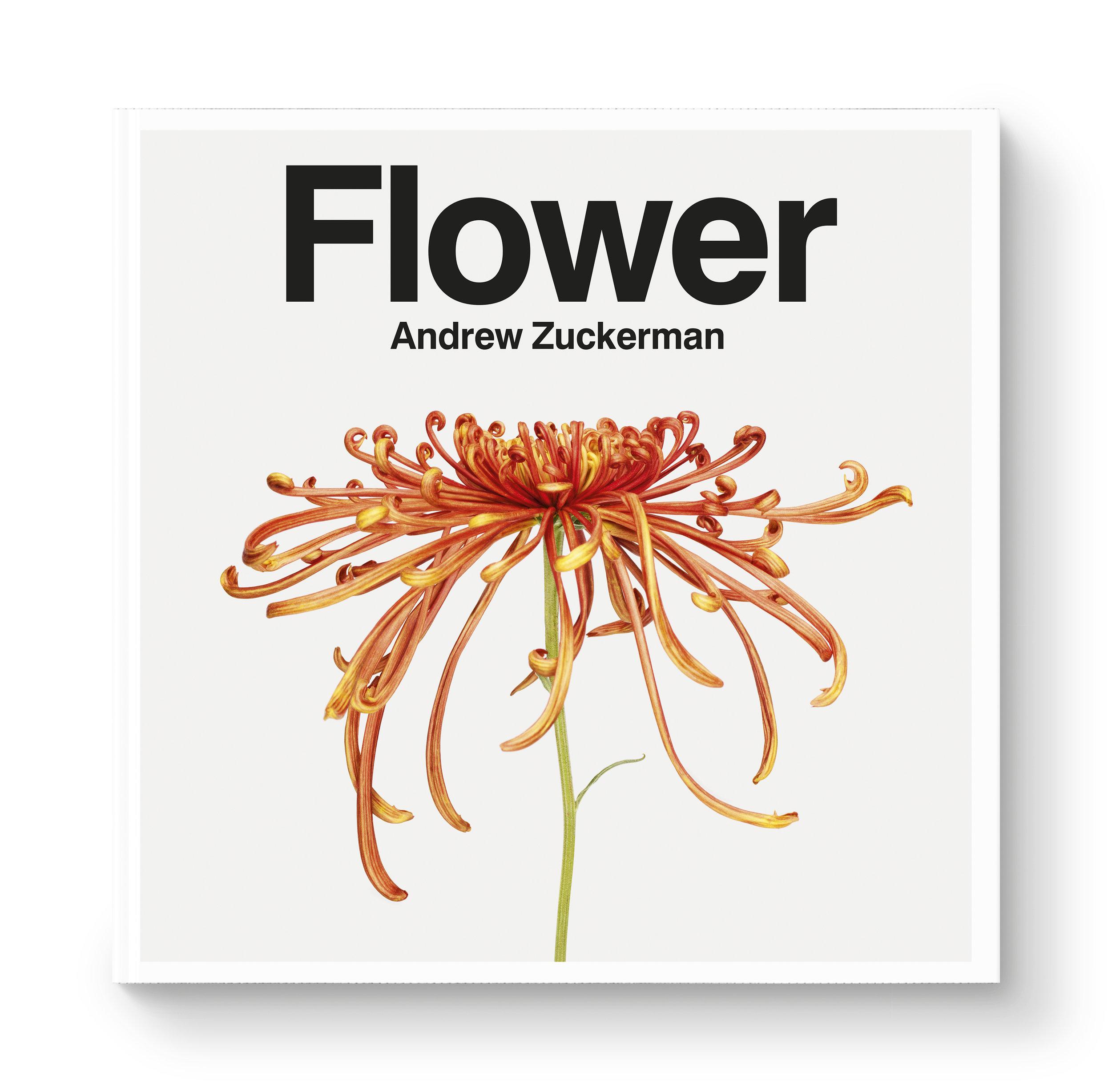 az-flower-jkt.jpg
