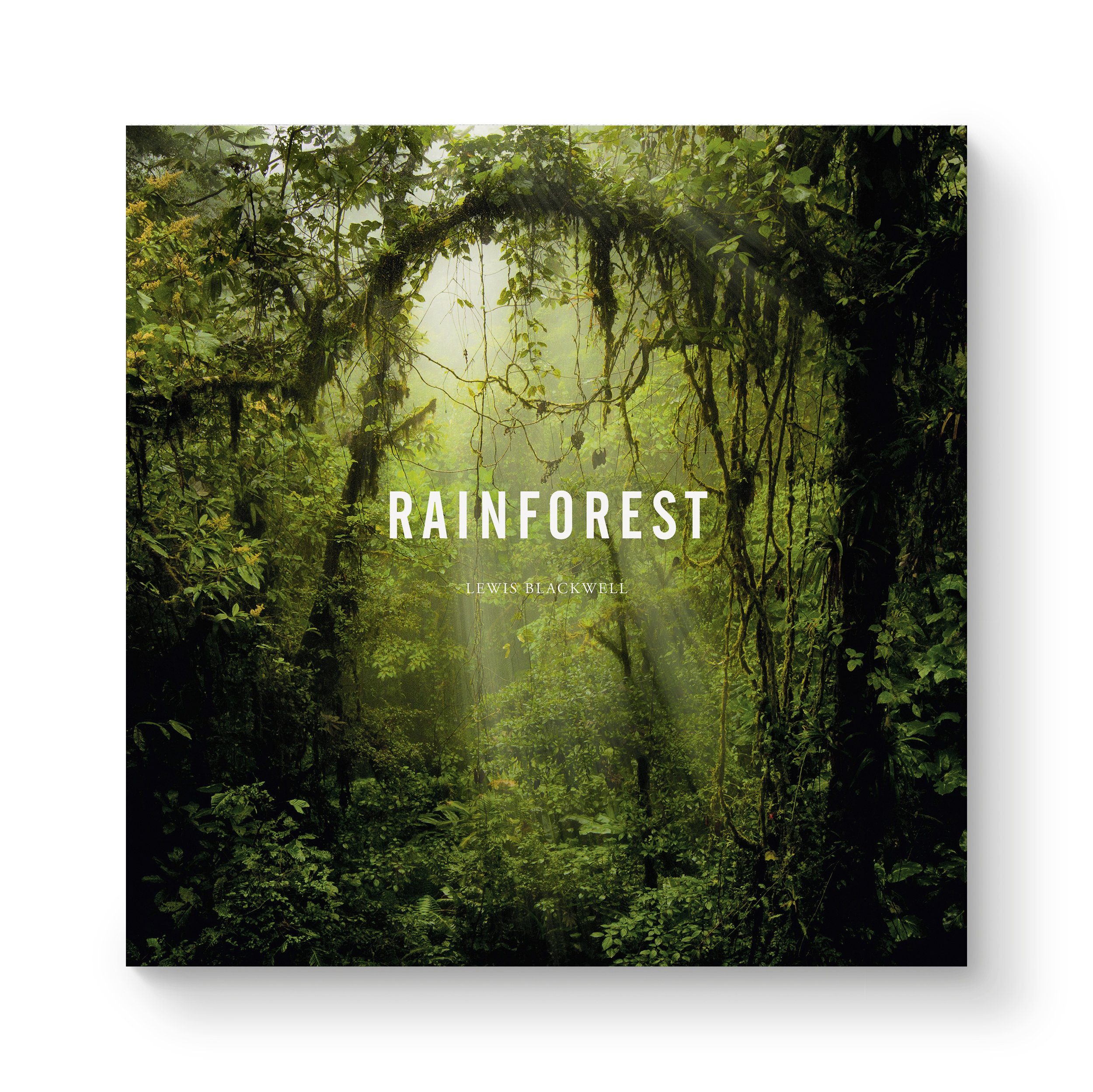 lb-rainforest-jkt.jpg