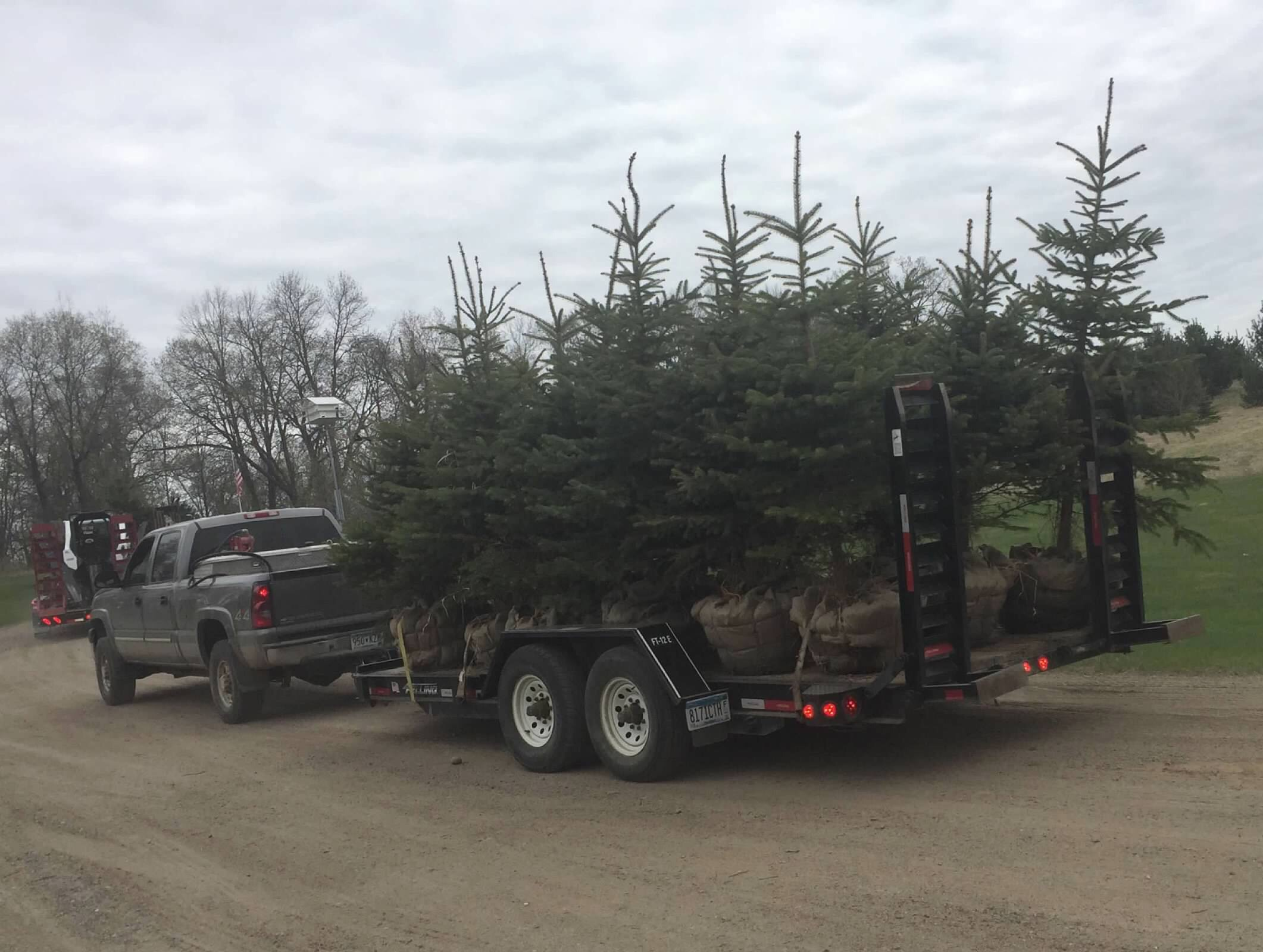 Tree Landscaping by Ryan Tree & Landscape Service